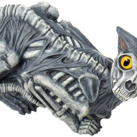 Halloween Decor: Zombie Cat