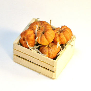 Miniature Pumpkins in Wood Crate Fairy Garden Dollhouse Farm Decor
