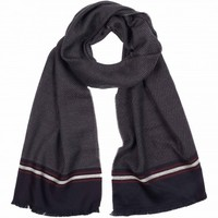 Aston Martin Racing Edge Stirpe Scarf - Hats & Gloves - Shop by product - Accessories | Hackett