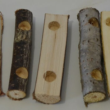 Natural Small Pet Chew - Play Logs