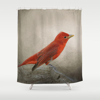 Song of the Summer Tanager 2 - Birds Shower Curtain by Jai Johnson