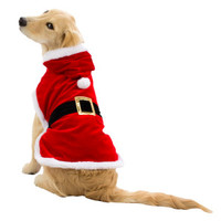 Top Paw® PetHoliday™ Santa Costume