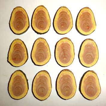 Natural wood pyrography supplies. Wood slices, wooden discs. Jewelry supplies,jewelry findings,wooden centerpieces.Wood burning craft blanks