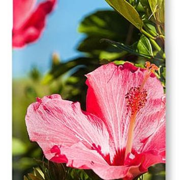 Flowers Of Paradise IPhone 7 Case