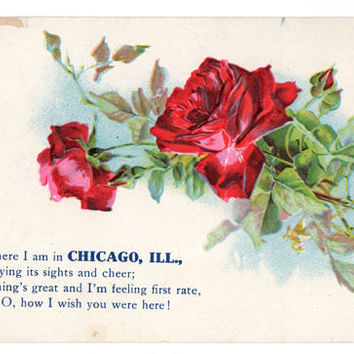 Vintage 1910's Chicago Illinois Souvenir Postcard, Red Roses, Greetings From
