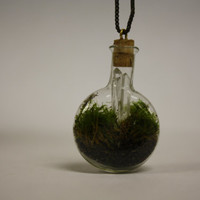 Unique Wearable Miniature Terrarium Pendant by MadvilleStudios