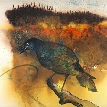 The Messenger - Fine Art Giclee Print watercolour gothic black raven crow dark forest Edgar Allan Poe Available in: 5x7, 8x10, 11x14 & 16x20