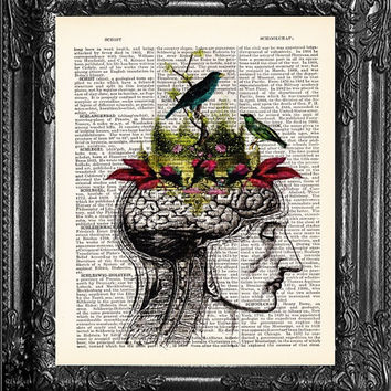 Wall Art-ANATOMICAL Head-Bird Brain-Dictionary Print Book Print Page Art-Wall Art Home Decor-College Dorm Home Decor- Funny Gift Poster