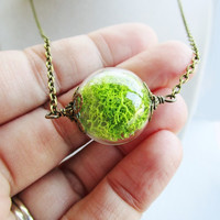 Green Moss Filled Glass Orb Terrarium Necklace in Bronze or Silver
