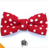 "Pet Bow Tie - ""Mad Professor"" - Red Polka Dot Detachable Bowtie for Cats + Dogs"