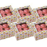 Cupcake Heaven Cupcake Boxes (Set of 6) by Wilton at Food Network Store