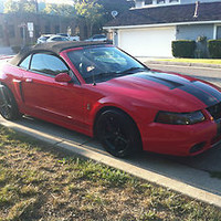 Ford : Mustang SVT Cobra 10th Anniversary