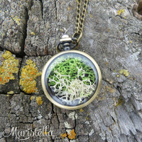 Real moss necklace, dried moss terrarium necklace, green moss jewelry, botanical jewelry locket necklace, nature necklace, terrarium jewelry