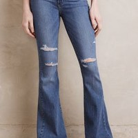 Paige High-Rise Bell Canyon Petite Jeans in Brady Size: