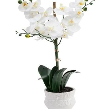 Faux Realistic Orchid in Ceramic Pot