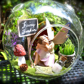 "Fairy Garden Terrarium ~ 8"" Glass Globe ~ Beautiful Fairy in Enchanted Garden ~ Lichen Moss ~ Mushroom ~ Fairy Door ~ Sign ~  ~ Gift idea"