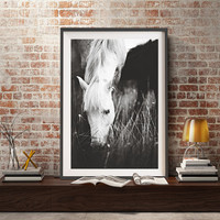 Horse wall art,Horse Print,white Horse print,white horse photography,camargue horse,south of france photography,Provence,Horse wall decor