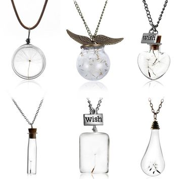 Make A Wish Glass Bead Orb Natural dandelion seed in glass long necklace Glass bottle necklace silver plated Necklace jewelry