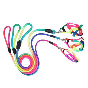 New Nylon Pet Dog Walking Slip Lead Collar Rope Strap Strong Training Leash For Dogs