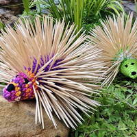 Toothpick Holder/ Toothpick Dispenser/Kitchen accessory/Porcupine Toy