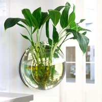 Home Decoration Pot Plant Wall Mounted Hanging Bubble Fish Bowl Acrylic Bowl Fish Tank Aquarium