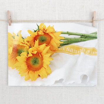 Original Photography Postcards, Sunflowers, Carte Postale
