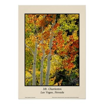 "Mt. Charleston NV Autumn Aspen 20""x28"" Poster"