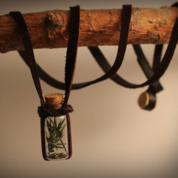 FREE SHIPPING - Juniper bottle necklace • Vial necklace • Pagan jewelry • Witch necklace • Wiccan • Upcycled jewelry