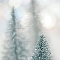 Silver Glittery Christmas Trees - 8x12 Fine Art photography print,  home decor, office decor, Holiday gift, Christmas gift