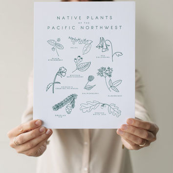 Letterpress Native Plants of the Pacific Northwest Botanical 8x10 Art Print