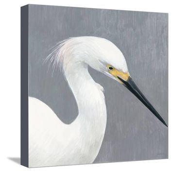 Seabird Thoughts 2 Premium Giclee Print by Norman Wyatt Jr. at Art.com