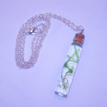 christmas moss in a vial necklace