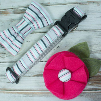 Gray and Pink Striped Dog Collar with Removable Bow Tie