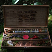 Herb Witch Starter Kit - pagan - wicca - larp - witchcraft - magick