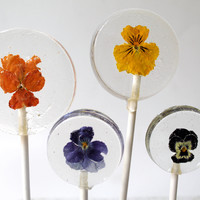 Viola Pansy Flower Lollipops 6 pieces