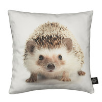 Baby Hedgehog Kids Cushion