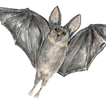 Halloween decor, bat art, watercolor painting, bat painting, halloween art, wildlife painting, gothic art, animala art, 10X8 orginal art