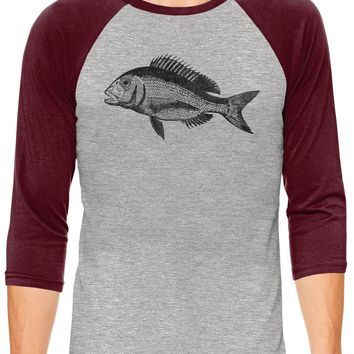 Austin Ink Apparel Baby Snapper Fish Grey Unisex 3/4 Sleeve Baseball Tee