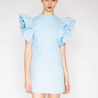 Blue ruffle sleeve dress - Shop the latest Fashion Trends