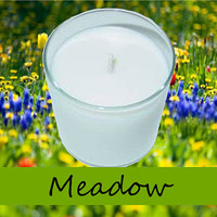 Meadow Scented Candle in Tumbler 13 oz