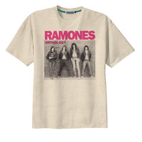 Retro Ramones Punk Rock US Band T-Shirt Tee Organic Cotton Vintage Look Size S M L