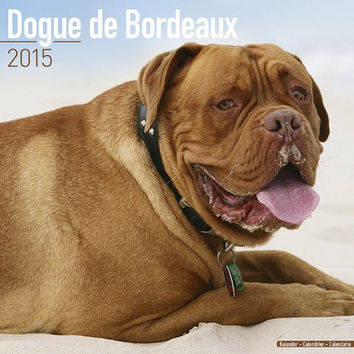Dogue De Bordeaux Calendar - Breed Specific Dogue De Bordeaux Calendar - 2015 Wall calendars - Dog Calendars - Monthly Wall Calendar by Avonside