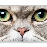 Cat Meow Face On iPhone 4 Case, iPhone 4s Case, iPhone 4 Hard Case, iPhone Case-graphic Iphone case
