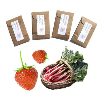 4 Tacoma Rhuberry Scented Sachets - DIY Farm Wedding Favors - Custom Color - Strawberry Rhubarb Home Fragrance - Modern Rustic Mini