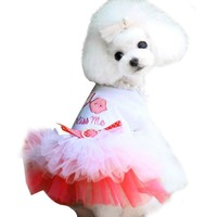 dog clothes for small dogs dress winter Puppy Small Dog Cat Lace Princess for chihuahua dog mascotas