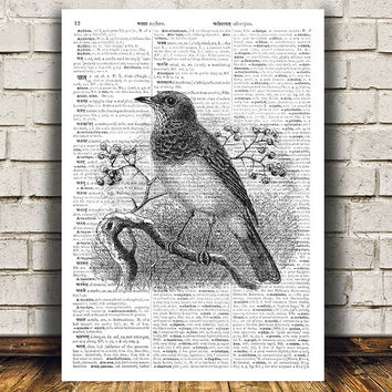 Bird print Dictionary art Wall poster Animal print RTA488