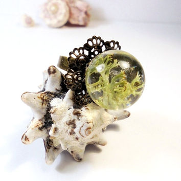 Resin Moss, Adjustable Ring, Cocktail ring, Sphere Shaped Resin Jewelry, Green Natural, Horned Moss, Accessories, Eco Body Jewelry, Floral