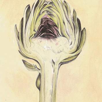 Artichoke II Botanical Print - Vintage Look Kitchen Art 8x10 - Kitchen Art