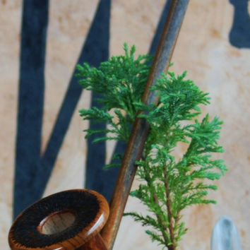 Death Cap Pipe Highly Figured Myrtlewood 10 Inch Rusticated Churchwarden Long Pipe