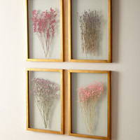 Framed Florals, Set of 4 | Neiman Marcus